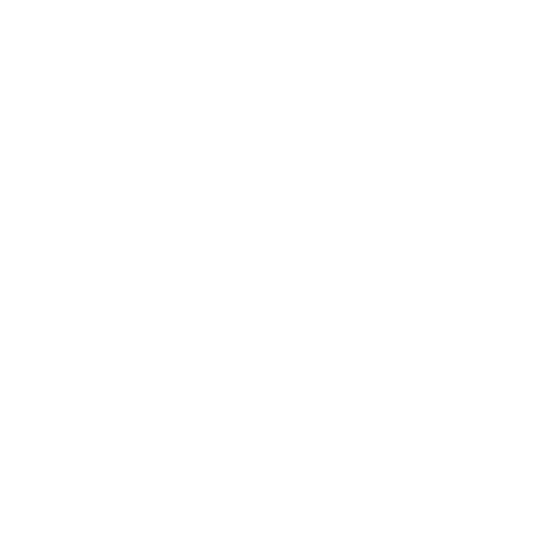 Guide star silver seal of transparancy logo